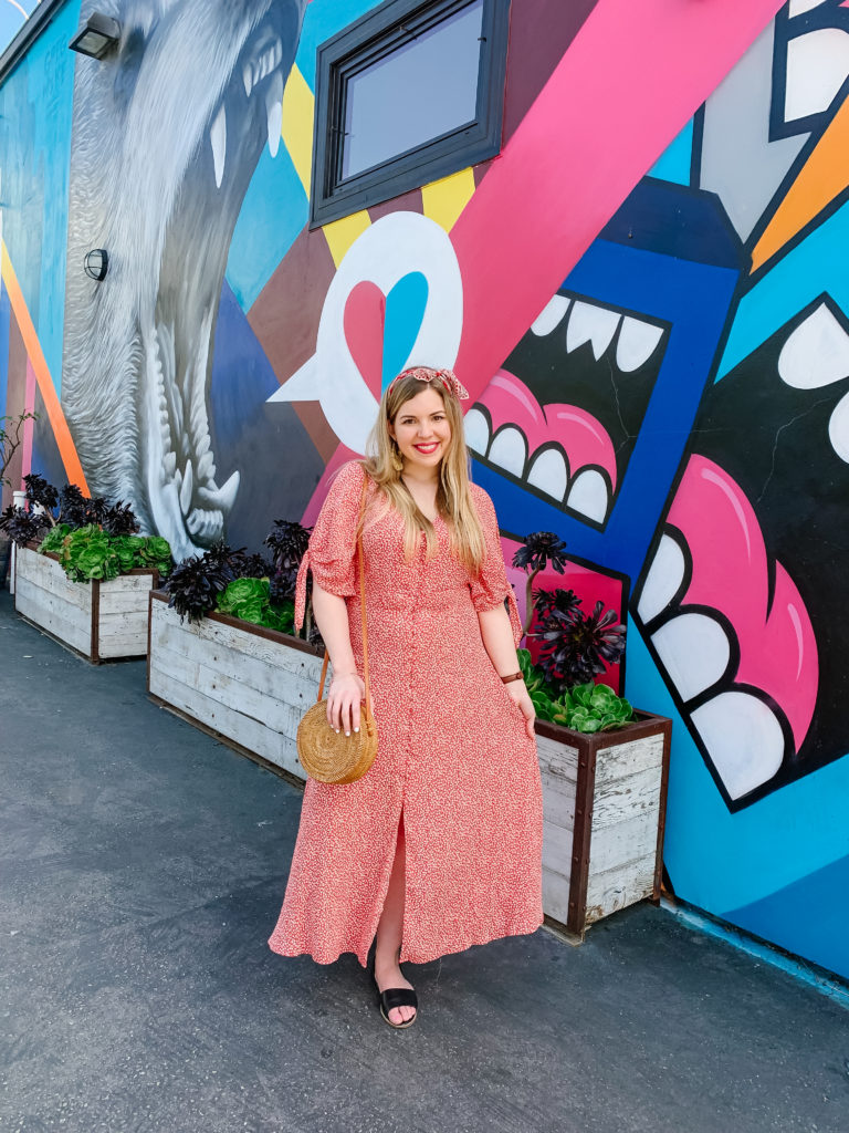 Abbot Kinney Mural - Best Photography Locations in Los angeles