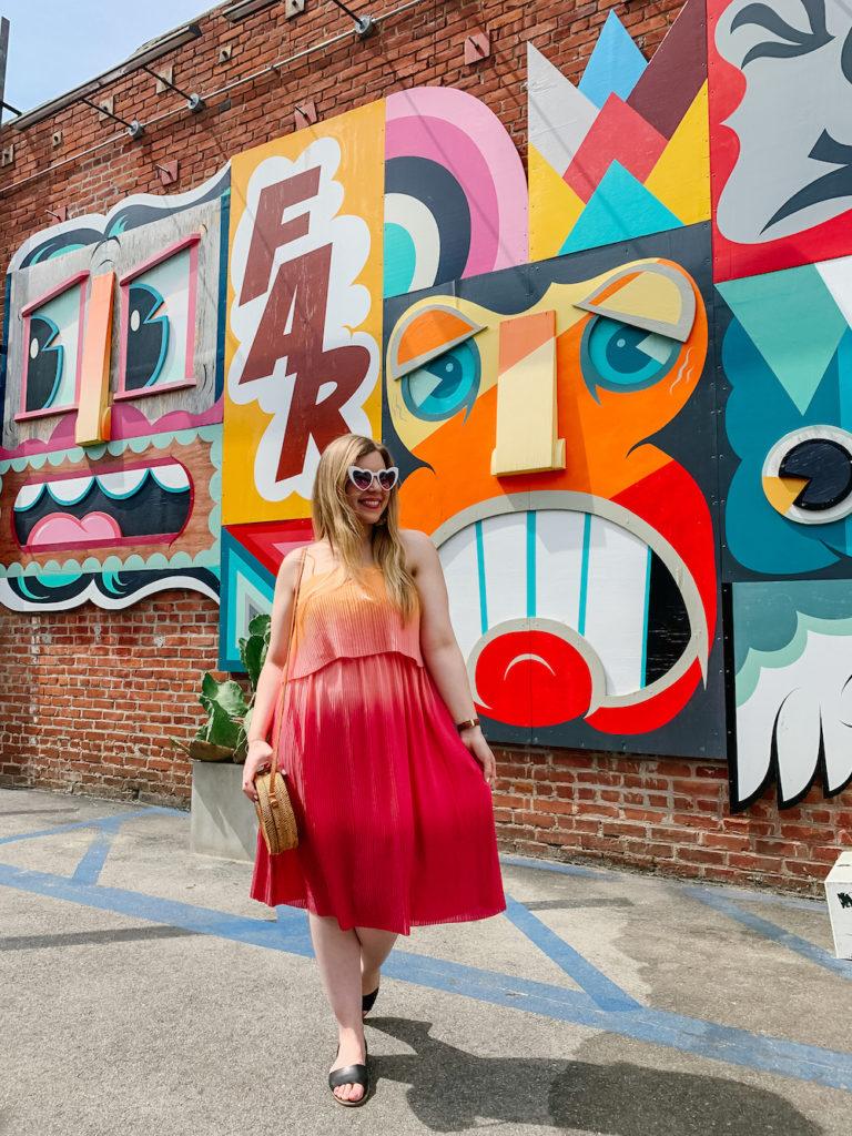 Abbot Kinney Mural - Best Photography Spots in LA