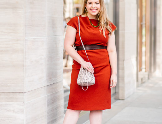 Burnt Orange MM LaFleur Marilyn Dress in Adobe Worn by Fashion and Lifestyle Blogger Jillian Goltzman of Cup of Charisma